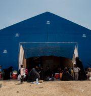 Kvinnor och barn i al-Hol  Baderkhan Ahmed / TT NYHETSBYRÅN