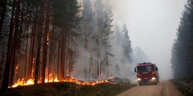 En av sommarens stora skogsbränder Mats Andersson/TT / TT NYHETSBYRÅN