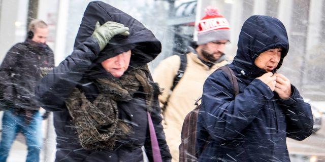 Två kvinnor går i snöblåst.  Rich Hein / TT NYHETSBYRÅN