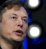 Elon Musk.  Susan Walsh / TT NYHETSBYRÅN