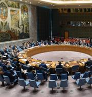 Donald Trump / FN:s säkerhetsråd / Xi Jinping TT