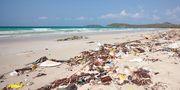 Skräp i hav och längs kuster är ett stort miljöproblem.  Colourbox