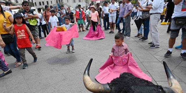 Demonstranter på Limas gator CRIS BOURONCLE / TT NYHETSBYRÅN