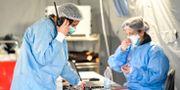 Läkare i ett tält i Cremona,  Italien. Claudio Furlan / TT NYHETSBYRÅN