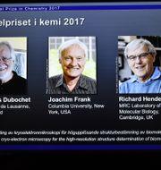 De tre pristagarna.  Claudio Bresciani/TT / TT NYHETSBYRÅN