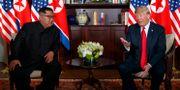 Kimg Jong-Un och Donald Trump vid toppmötet i Singapore. Evan Vucci / TT / NTB Scanpix