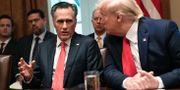 Mitt Romney och Donald Trump. Susan Walsh / TT NYHETSBYRÅN