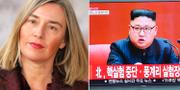 Federica Mogherini och Kim Jong Un