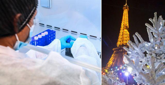 Läkare i Frankrike och julgran i Paris.  TT