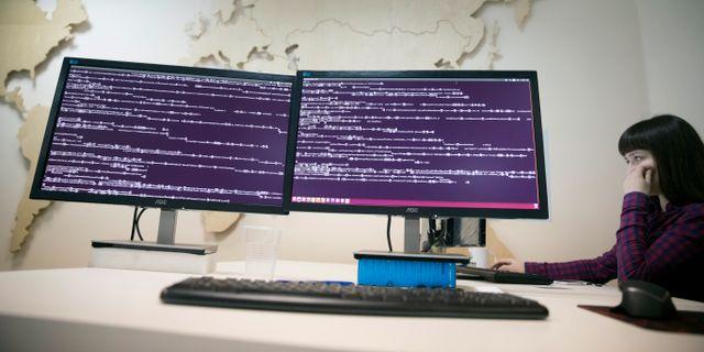 Illustrationsbild: Hackade datorer. Pavel Golovkin / TT NYHETSBYRÅN