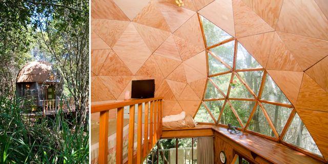 Läckra svamphuset är Airbnbs populäraste boende. Airbnb
