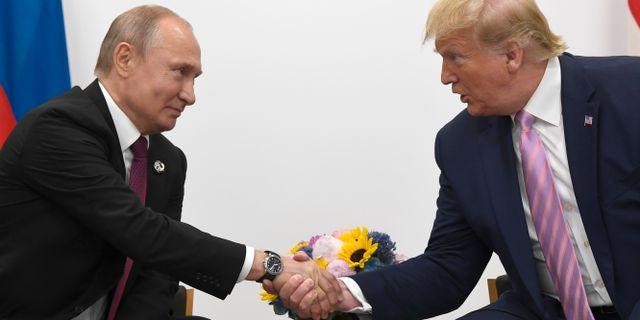 Putin och Trump skakar hand under G20-mötet i juni Susan Walsh / TT NYHETSBYRÅN