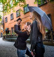 Gamla stan i Stockholm. Nora Lorek/TT / TT NYHETSBYRÅN