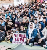 Ensamkommande asylsökande demonstrerar i Stockholm 2017. Lars Pehrson/SvD/TT / TT NYHETSBYRÅN