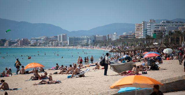 Turister på stranden på Mallorca efter att Spanien börjat välkomna turister i större skala igen i juni.  Francisco Ubilla / TT NYHETSBYRÅN