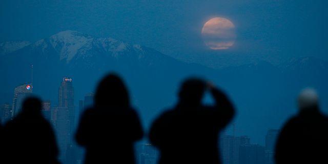 Superblodmånen fotad i Los Angeles, USA. Ringo H.W. Chiu / TT NYHETSBYRÅN
