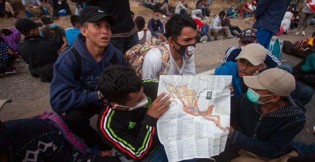 Migranter vid den mexikanska gränsen. Sandra Sebastian / TT NYHETSBYRÅN