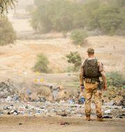 Arkivbild: En spaningssoldat, som ingick i den svenska FN-styrkan i insatsen Minusma i Mali på patrull 2015 Henrik Montgomery/TT / TT NYHETSBYRÅN