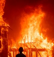 Camp Fire rasade i november förra året.  Noah Berger / TT NYHETSBYRÅN