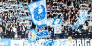 Malmö FF:s supportrar under fotbollsmatchen i Allsvenskan mellan Elfsborg och Malmö FF den 22 september i Borås. JÖRGEN JARNBERGER / BILDBYRÅN