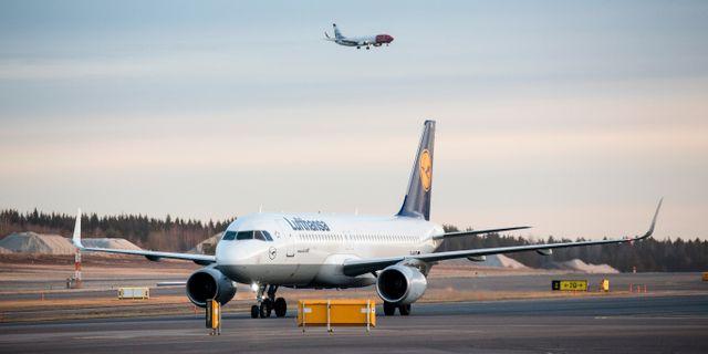 Ett Lufthansa-plan på marken/arkivbild.  Christine Olsson/TT / TT NYHETSBYRÅN