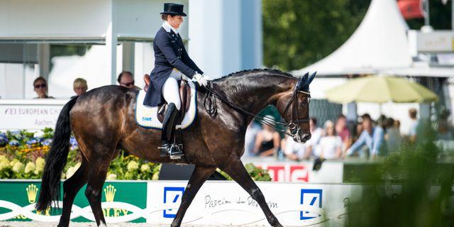 Tinne Vilhelmsson Silfvén på hästen Don Auriello vid dagens tävlingar Pontus Lundahl/TT / TT NYHETSBYRÅN