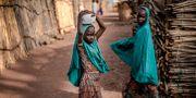 Malkohi-lägret. LUIS TATO / AFP