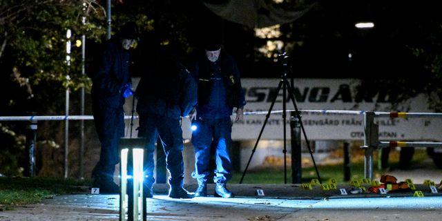 60 kroppar hittades i bagdad