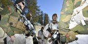 Militärer under arméövningen Northern Wind i östra Norrbotten. Naina Helen Jåma / TT NYHETSBYRÅN