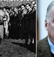 Adolf Hitler/Alexander Gauland TT