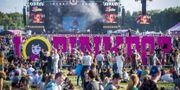 Bild från festivalen Pinkpop i Nederländerna.  MARCEL VAN HOORN / ANP