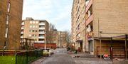 """Hyreshus på Herrgården i Malmö som ägs av Victoria Park.  MalmöBild / TT"""" / TT NYHETSBYRÅN"""
