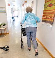 Behovet av vård och omsorg kommer öka, enligt socialminister Lena Hallengren (S).  Kallestad, Gorm / TT NYHETSBYRÅN