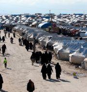 Bild från al-Hol-lägret i Syrien. Ali Hashisho / TT NYHETSBYRÅN