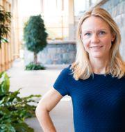 Maria Brogren,chef Hållbarhet och innovation, WSP Sverige WSP
