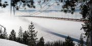 Högakustenbron, hängbron över Ångermanälven.  ANDERS WIKLUND / TT / TT NYHETSBYRÅN