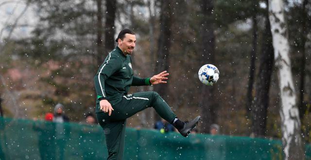 Zlatan på en träning med Hammarby i april. Henrik Montgomery/TT / TT NYHETSBYRÅN