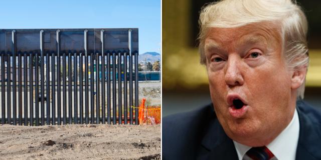 Nödläget som Donald Trump utlyste för att bygga gränsmuren hotas nu av senaten.  TT