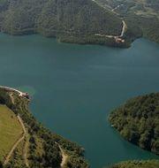 Sjön, Trump. Illustrationsbilder Wikipedia, TT