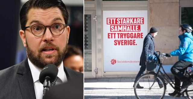 SD-ledaren Jimmie Åkesson.  TT.