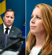 Sjöstedt, Löfven och Lööf.  TT