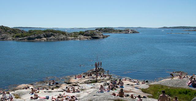 Bohusläns klippiga strandlinje (arkivbild). Adam Ihse/TT / TT NYHETSBYRÅN