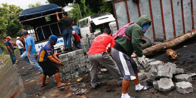 Gatustrider i guatemala