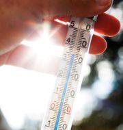SMHI varnar för mycket höga temperaturer i Kalmar. Johansen, Erik / TT NYHETSBYRÅN