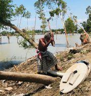 En äldre person arbetar efter översvämningar i närheten av Dhaka i Bangladesh. Al-emrun Garjon / TT NYHETSBYRÅN