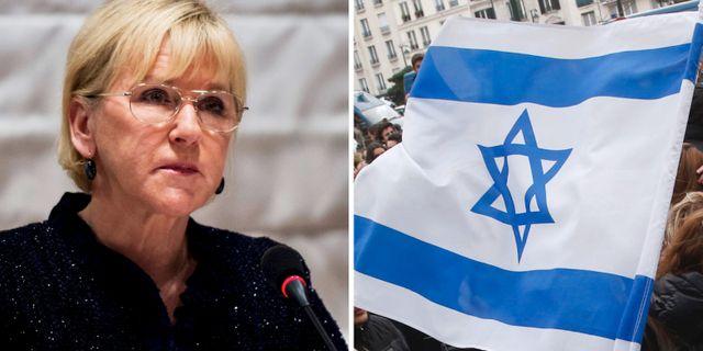 Darfor skjuter wallstrom upp israelresa
