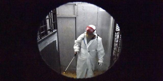 Arkivbild: En byggnad i Bab el-Oued-distriktet i Alger desinfekteras från coronaviruset.  RYAD KRAMDI / TT NYHETSBYRÅN