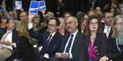 Liberalernas partiråd under en omröstning i januari. Claudio Bresciani/TT / TT NYHETSBYRÅN