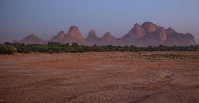 Bild från gränsen mellan Etiopien och Eritrea.  Nariman El-Mofty / TT NYHETSBYRÅN