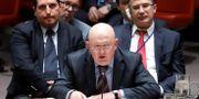 Rysslands FN-ambassadör. SHANNON STAPLETON / TT NYHETSBYRÅN